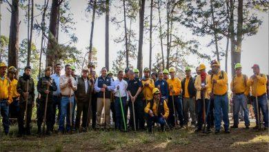Photo of Víctor Manríquez pone en marcha Campaña de Prevención, Control y Combate de Incendios Forestales Uruapan 2020