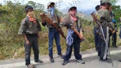 Photo of Hartos del crimen organizado, pobladores de guerrero reclutan niños para combatir la delincuencia