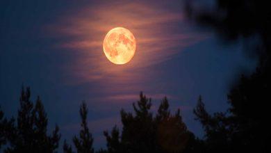 Photo of Hoy podrás ver la segunda Luna de Fresa