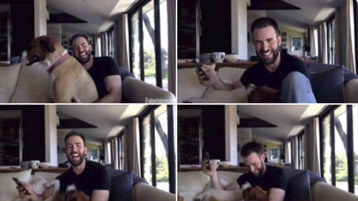 El perro de Chris Evans interrumpe reunión de beneficencia