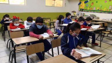 Photo of SEP: El regreso a clases iniciará con un curso para ver que niñas y niños no tengan algún rezago