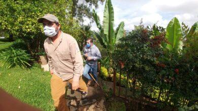 Photo of Buscan al puma en la zona sur de Morelia